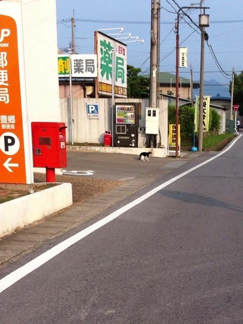 machikado - 2
