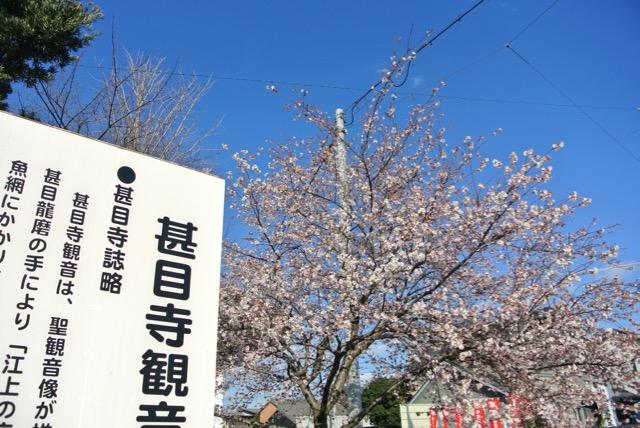 owari_jimokuji-12